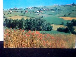 OLIVA GESSI...SCORCIO...PAESE DI PAVIA  N1975 ID8096 - Pavia