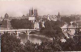 PARIS        2339       Panorama De La Cité.Le Pont Neuf Et Notre Dame - Mehransichten, Panoramakarten