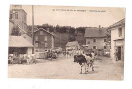 LES HOPITAUX NEUFS EN MONTAGNE - Rentrée Du Bétail - VACHES -  (Bréger) - - Otros Municipios