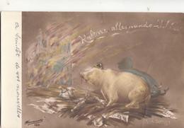 BV70. Vintage Postcard. A Drunk German Pig Destroying Culture? - Patriotic