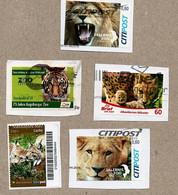 BRD - Privatpost - 5 W - Luchs (Lynx), Löwen (Panthera), Gepard (Acinonyx), Tiger (Phanthera) - Raubkatzen