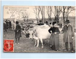 12 L'AVEYRON PITTORESQUE - En Attendant Les Acheteurs - Autres Communes