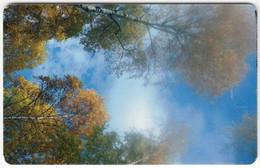 POLAND B-217 Chip Telekom - Landscape, Wood, Autumn - Used - Pologne