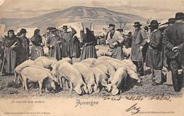 Divers         63        Auvergne. Le Marché Aux Cochons      (voir Scan) - Non Classificati