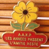 Joli Pin's, Les Années Passent L'Amitié Reste, émail Grand Feu, TBQ, Pins Pin. - Altri