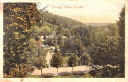 PITESTI / ARGES : PARCUL TRIVALEA - EDITURA AD. MAIER & D. STERN / BUCURESTI ~ 1905 - '910 (ah352) - Rumania