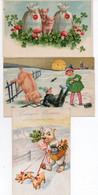 3 Cartes Fantaisies Cochons - Schweine