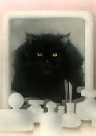 CPSM - CHAT ... Illustration Pierre Furrer - Edition A.Deriaz - Cats