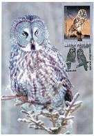 MAX 32 - 96 OWL, Romania - Maximum Card - 2005 - Eulenvögel