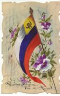 Russie - Carte Celluloïd - Courage, Confiance, Vive La Russie - Drapeau, Et Pensées - Russia