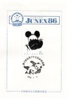 China Post In Japan 1986 With Panda Bear - Bären