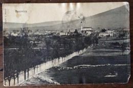 FRIULI VENEZIA GIULIA  - DAZOVICA - BASOVIZZA - CARTOLINA DEL 20/5/1910 PER FIRENZE - Mundo