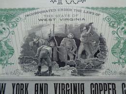 USA - VIRGINIE 1902 - THE NEW YORK & VIRGINIA COPPER CIE - TITRE DE 100 ACTIONS DE 1$ - Unclassified