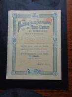 MINIERE BELGE-BRESILIENNE DE TRES-CRUZES - ACTION PRIVILEGIEEDE 250 FRS - BRUXELLES 1901 - Unclassified