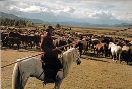 1 AK Mongolei * Ein Hirte Mit Einer Herde Von Pferden * - Mongolia
