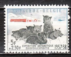 1031**  Expédition Antarctique Belge - Série Complète - MNH** - COB 35 - Vendu à 14% Du COB!!!! - Ongebruikt