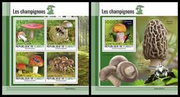 DJIBOUTI 2021 - Mushrooms, M/S + S/S. Official Issue [DJB210201] - Mushrooms