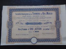 TUNISIE - MONASTIR 1906 - SA DE LA THONAIRE DE RAS-MARSA - TITRE DE 1 ACTION DE 100 FRS - Unclassified