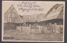 Romania - KARPATHEN MATIN - Carpathian - Real Photo 1917 ( K. U.k. Kommando Der Prislopbahn Mark) - Romania