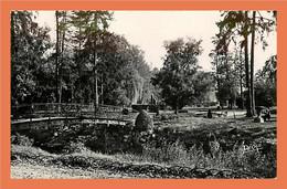 A160 / 233 70 - VESOUL - Jardin Anglais - Zonder Classificatie