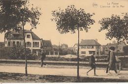 De Panne , La Panne , Avenue De La Mer ,( STAR ,n° 1698 ) - De Panne
