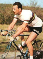 CYCLISME - WIELRENNEN - CICLISMO - 1 PHOTO REPRODUCTION - RIK VAN STEENBERGEN - CHAMPION DU MONDE - Cycling