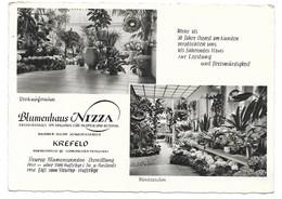 4150  KREFELD, BLUMENHAUS NIZZA RHEINSTRASSE 92  1953 - Krefeld