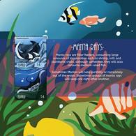 Tuvalu 2020 Fauna  Manta Rays I202104 - Tuvalu
