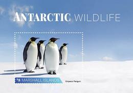 Marshall Islands 2020    Fauna Antarctic Wildlife Penguin    I202104 - Marshall Islands