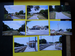 Photo ,TRAMWAY Et Gares De GIRONDE , Collection Bourneuf ,lire Descriptif  ,Lesparre ,Hostens - Treinen