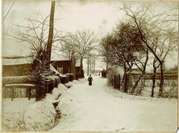 3 Photos Collées Sur Carton, Grammont, Château De Goefferdingen (Goeferdinge), Famille Van Der Linden, Hiver - Geraardsbergen