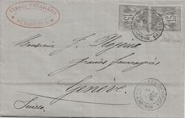 Sorgues Sur L'Ouvèze (Vaucluse) : LAC Pour Genève, Sage N°66 X 2, 1876. - 1877-1920: Periodo Semi Moderno