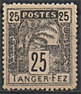MAROC POSTES LOCALES 1892 TANGERI A FES Y&T N° 124 N** - Locals & Carriers
