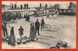 LE CROTOY . L'arrivage Du Poisson Au Port - Le Crotoy