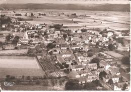 BOEIL-BEZING (64) Vue Panoramique Aérienne En 1955  CPSM GF - Other Municipalities