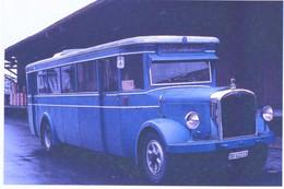 Ancienne Autobus Rapperswill En Suisse En 1967  -  15x10cms PHOTO - Buses & Coaches