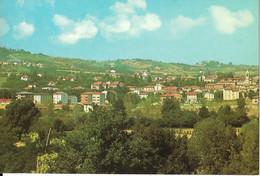 9-TRAVERSETOLO(PARMA)PANORAMA - Parma