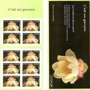 France.carnet Bc3805.c Est Un Garcon.année 2005.neuf Non Plié. - Commemoratives