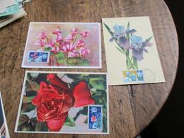 Lot De 20 C M Carte Maximum Romanie Espagne San Marin Voir Photo - Colecciones (sin álbumes)