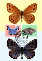Maximumkarte 2021 EUROPA - Bedrohte Tierarten, Schmetterlinge / Butterflies / Papillons / Farfalle - Maximumkarten (MC)