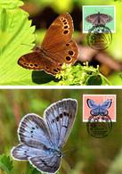 2 Maximumkarten 2021 EUROPA - Bedrohte Tierarten, Schmetterlinge / Butterflies / Papillons / Farfalle - Maximumkarten (MC)