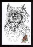 Moldova 2021 Europa CEPT Endangered National Wildlife Owl Maxicard - Moldavia