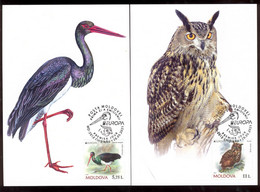 Moldova 2021 Europa CEPT Endangered National Wildlife Owl Stork 2 Maxicards - Moldavia