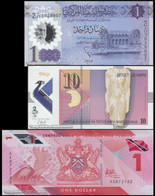 TWN - POLYMER Set Of 3 Different UNC Banknotes - Starting € 0,01 - Otros