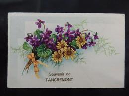 Tancremont - Souvenir De Tancremont - Circulée - 2 Scans - Theux