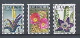 NB - [150308]SUP//**/Mnh-N° 1318/20, Du Bloc 38, Floralies Gantoises 3, Fleurs, Vriesia, Echinocactus Et Stapelia, SNC - Unused Stamps