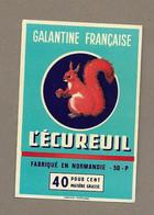 ETIQUETTE De FROMAGE.. GALANTINE Fabriqué En NORMANDIE ( Manche 50-P).. L'Ecureuil - Cheese