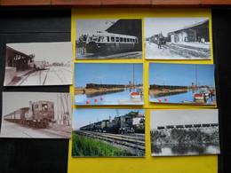 Photo ,TRAMWAY Et Gares De L'HERAULT , Collection Bourneuf ,lire Descriptif ,Palavas - Treinen