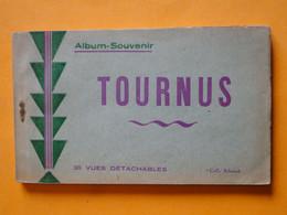 TOURNUS -- Carnet Complet De 20 Cartes Postales Anciennes - Album Souvenir Collection Schenk - Otros Municipios