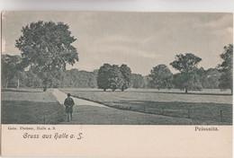 CPA - ALLEMAGNE - PEISSNITZ - Gruss Aus Halle A.S. - Edition Gebr Plettner Vers 1905 1910 - Non Classificati